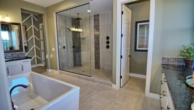 3132SF_Master Shower (Medium)